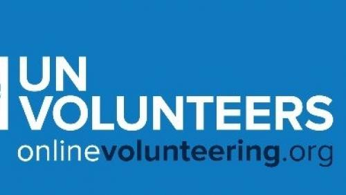 Online volunteer opportunities