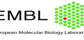 Funded Postdoctoral Fellowships at EMBL laboratories in Europe