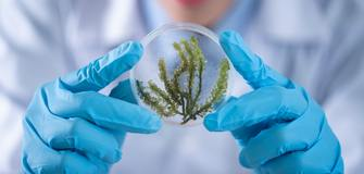 Cash Prizes in Sustainable Chemistry Challenge Valued 50,000 Euro from Elsevier