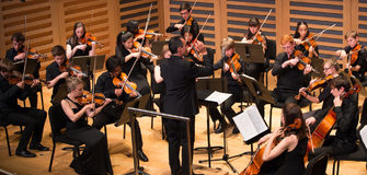 Bachelor Scholarship in Music to Study Stringed Instruments at Queensland University in Australia
