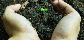 Poster Design Competition about Compost Benefit in Soil and Cash Prize of $600