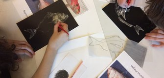 Opportunity to Win 600 Euros from the Illustraciencia Scientific Explanation Competition